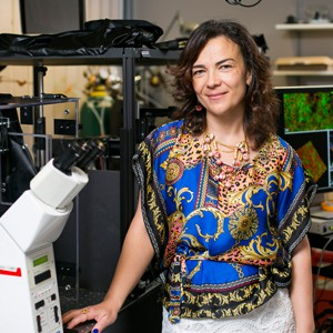 Irene Georgakoudi, Ph.D.